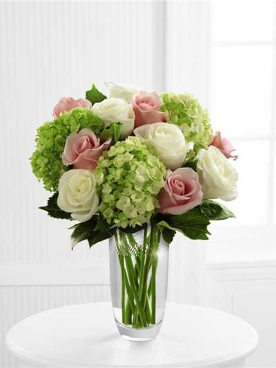 Pink and White Hydrangeas